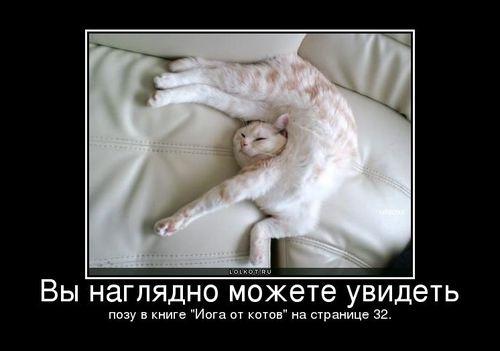 yoga-ot-ktov_1320480200